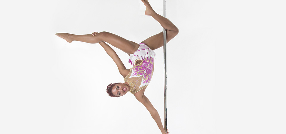 Picture Wellway Sports Pole Dance Course